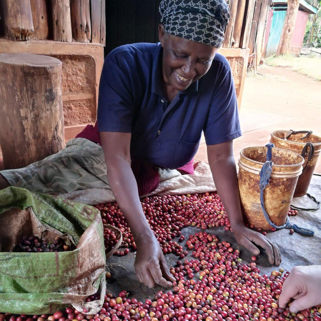 Kaffebäuerin in Kenia